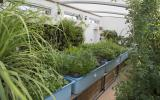 Learn about aquaponics systems for schools, communities and businesses at Kate Humble's farm Humble by Nature
