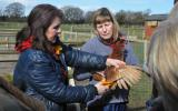 Liz Shankland teaching Smallholding for Beginners at Humble by Nature