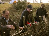 Hedge Laying course at Kate's Farm Humble by Nature