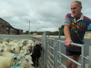 Tim Stephens Farmer and smallholding tutor at Humble by Nature catching a sheep