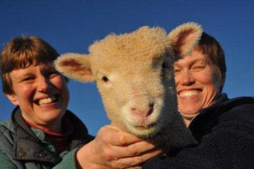Learn a rural skill come on a course at Kate Humble's farm Humble by Nature