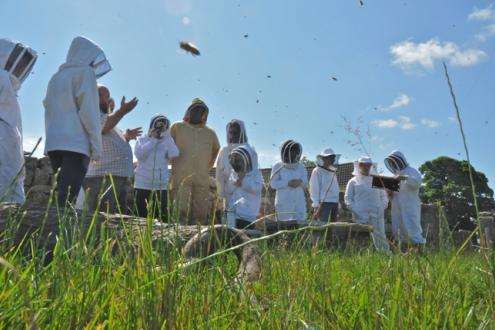 Sustainable Bee Keeping course at Kate Humble's Farm Humble By Nature